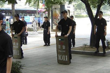 В Южной Корее началось...