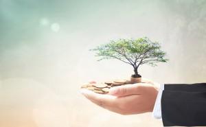 Новый фонд для стартапов...