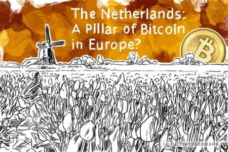 2% Нидерландский семей...