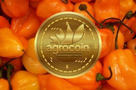 Agrocoin — криптовалюта...