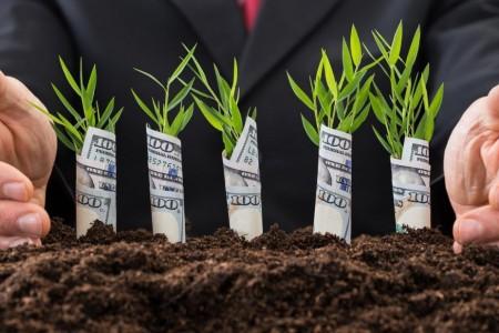 Опытные инвесторы умеют...